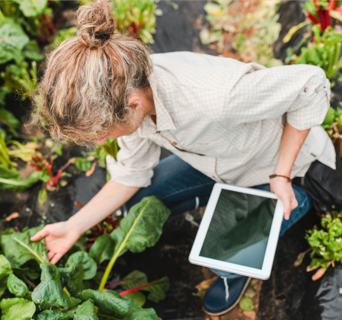 Digital Grower Tools for Agriculture